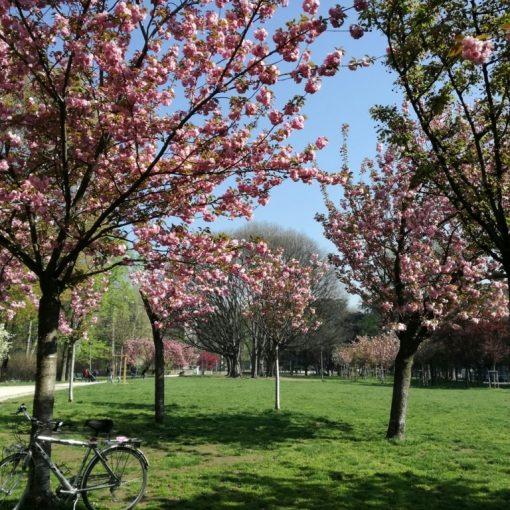 tour guidato in bici giardini di milano bici e vacanze