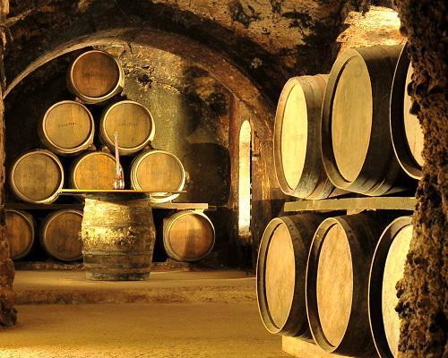 Botte di vino spagna tour bici e vacanze