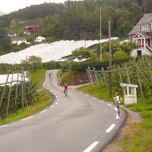 fiordi norvegesi in bici