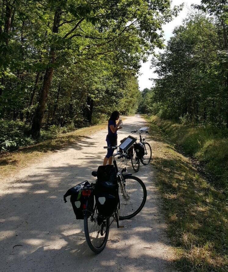 persona bici bosco
