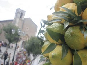 lemon sicily baroque by bike