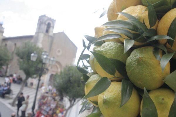 lemon sicily baroque by bike