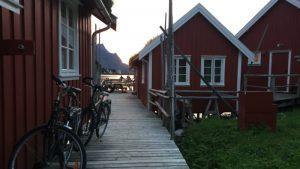 Lofoten norvegia in bici _bici e vacanze