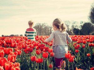 Bambini campo tulipani fiorito tour in bici e barca