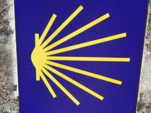 Conchjglia simbolo cammino di santiago di Compostela