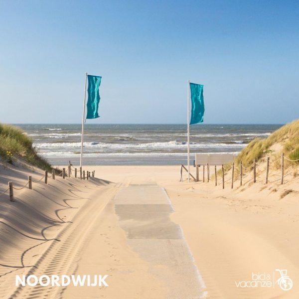 dune spiaggia mare