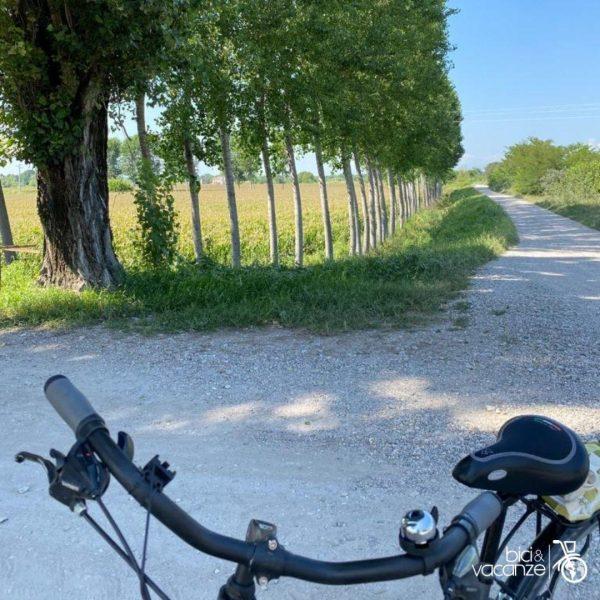 bici pista ciclabile