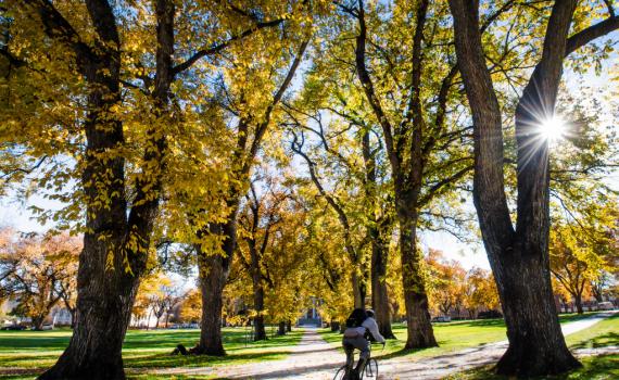 Pedalare in autunno