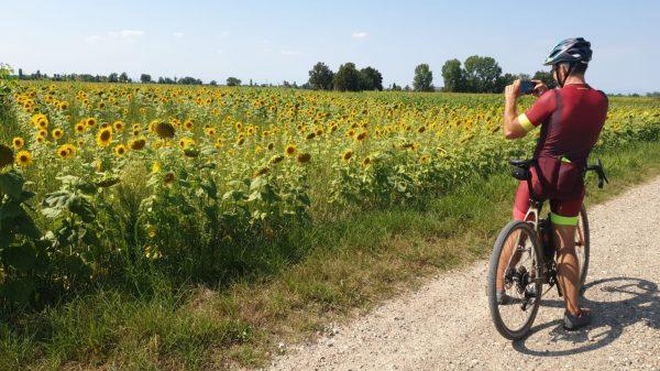 Tour di gruppo in bici; milano week-end, bici e vacanze